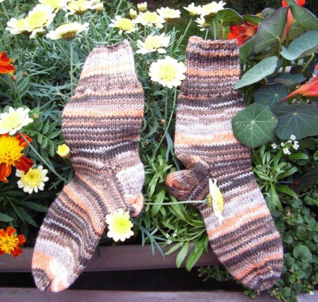 Socken 17 09